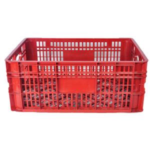 caja plástica para almacenamiento para frutas barranquilla
