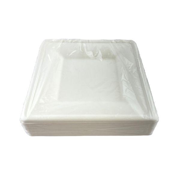 plato-desechable-ecologico